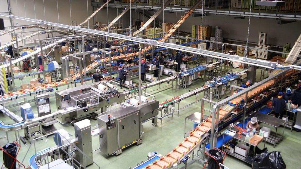 Pavimenti per laboratori alimentari u recodi